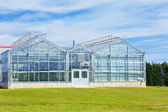 Glass Greenhouses — Stock Photo