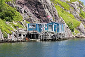 Newfoundland House — Stock Photo