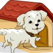 Dog House - Stock Photo