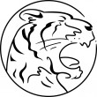Year of the Tiger — 图库照片