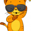 Cool Cat — Stock Photo
