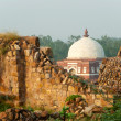 Stock Photo: Delhi Fort