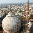 Old Delhi — Stock Photo #9011881