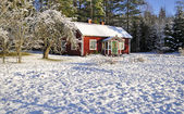 Red cottage in winter — Stock Photo