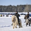 Icelandic horse race in winter — Photo
