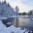 Scenic river in winter — Stock Photo #8161609