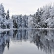 Scenic river in winter — Stock Photo