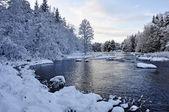 Scenic river in winter — Stock Photo