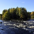 River in Sweden — Stock Photo