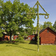 House and midsummer tree — Stock Photo