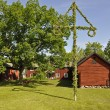 Stock Photo: House and midsummer tree