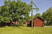 House and midsummer tree — Stock Photo