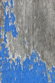 Texture of old paint on wood — Stock Photo