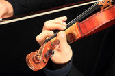 Violin is in the hands of professional violinist. — Stock Photo