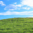 Green grass hills under midday sun — Stock Photo #8465200