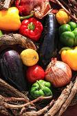 Korb mit gemüse — Stockfoto