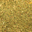 Oregano spice closeup - Stock Photo