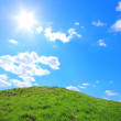 Green grass hills under midday sun — Foto Stock
