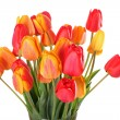 Bunch of tulips — Stock Photo