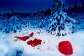 санта упала в снег — Стоковое фото