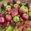 Fresh green red apples  variety on autumn leaves — 图库照片