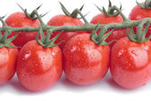 Cherry vine tomatoes over white background — Stock Photo