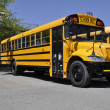 One yellow school bus — Stock Photo