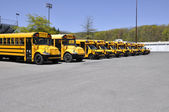 Row of school buses — Stock Photo