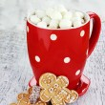 Hot Cocoa With Marshmallows — Stock Photo #8042838
