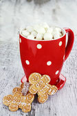 Hot Cocoa With Marshmallows — Stock Photo