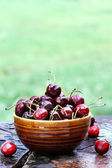 Bowl of Cherries 2 — Stock Photo