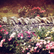 The Rose Garden — Stock Photo #9028098