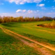 Landscape painting showing country road that leads through beautiful nature on sunny spring day — Stock Photo #10183251