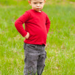 Cute angry little boy standing in the middle of the meadow on beautiful spring day - Stock Photo
