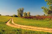 Piękny krajobraz wyświetlone polna droga w słoneczny wiosenny dzień — Zdjęcie stockowe