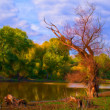 Landscape painting showing dead tree beside the river on cloudy autumn day — Stock Photo