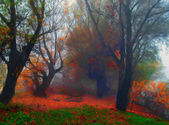 Landscape painting showing creepy old forest on misty autumn day — Stock Photo