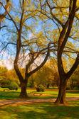 Pintura de paisaje mostrando detalles del hermoso parque en otoño — Foto de Stock