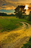 Landscape painting showing old road curving around lonely tree on sunset — Stock Photo