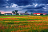 Landscape painting showing cultivated land in front of the village — Stock Photo