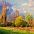 Landscape painting showing meadow and trees on the cloudy day — Stock Photo