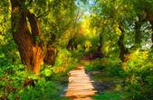 Landscape painting showing small wooden bridge that leads over small stream — Stock Photo