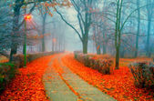 Landscape painting showing walkway through the park on misty autumn day — Stock Photo