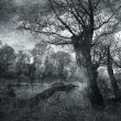 Stock Photo: Creepy art grunge landscape in black and white