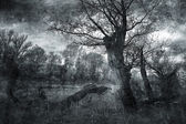 Creepy art grunge landscape in black and white — Stock Photo