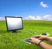 Arbetar på datorn mitt i den vackra gröna ängen — Stockfoto