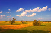 Landscape painting showing cultivated land, couple of trees — Stock Photo