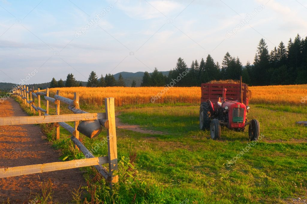 Agriculture landscape showing cultivated land, wooden fence and small tractor with trailer on the sunny summer day — Stock Photo #8544969
