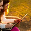 Two beautiful teenage girls having fun with notebook in the park on sunny spring day — Stock Photo #9406531