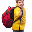 Handsome chubby teenage boy with school bag on his back showing thumbs up isolated on white — Stock Photo #9529208